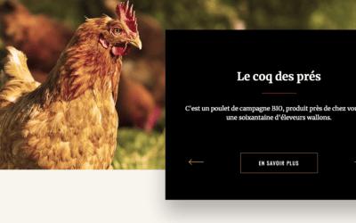 Projet d'élevage de poulets à Tourinne